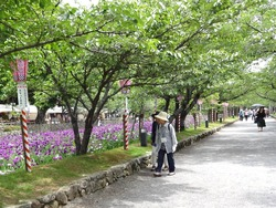 大村公園02-7