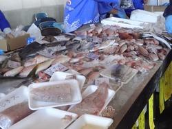 海鮮祭り03-5