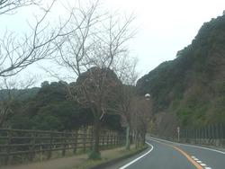 稲佐山01-2