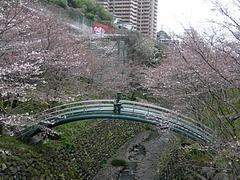 桜0318・05-4