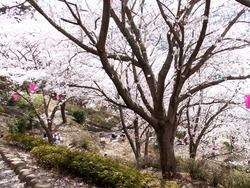 中尾城公園02-3