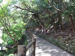 小ヶ倉水園01-4