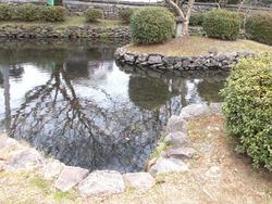 円融寺庭園01-7