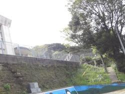 大瀬戸05-3