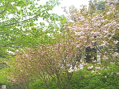 新戸町公園02-2