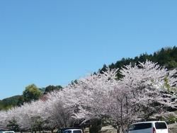 伊佐ノ浦公園03-6
