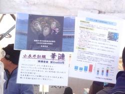 三海海鮮まつり04-5