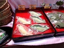 ミニ鯉菓子