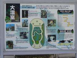 亜熱帯植物園03