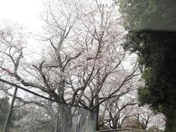 和三郎公園01-4