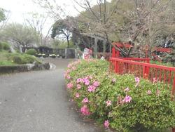 中尾城公園01-3