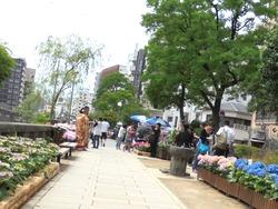 中島川01-6