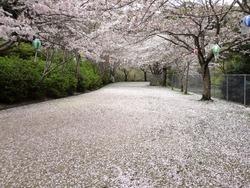 鹿尾川公園02-4