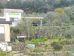桜・長与02-2