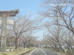 大村公園04-2
