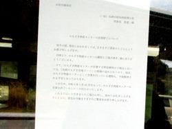 のもざき水仙03-3