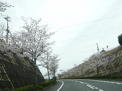 大村01-4