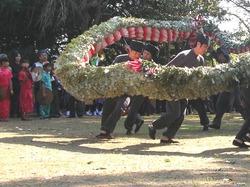 角上蛇踊01-2
