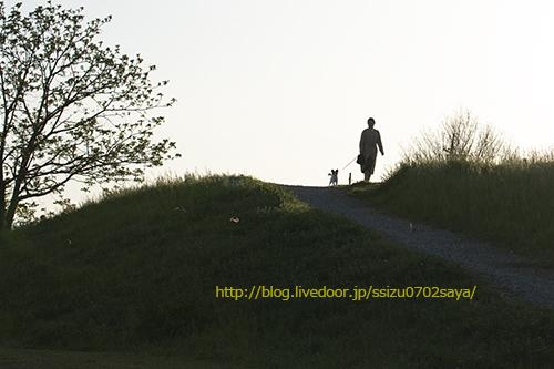 blog-IMG_2490