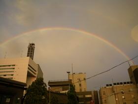 九段会館ビアガーデンから見た虹