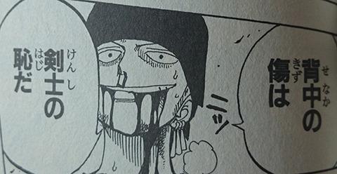 ゾロ「背中の傷は剣士の恥だ」敵剣士「絶対に背中を斬ってやる!」