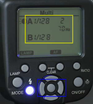 10023