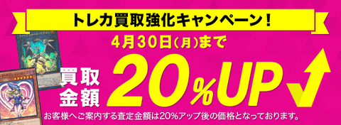 y-campaign