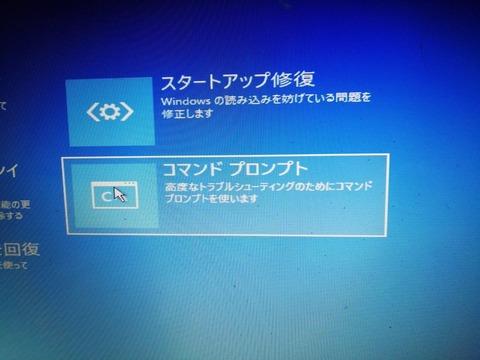P1100705 (23)
