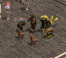 熊vs熊剥製