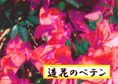 造花のペテン