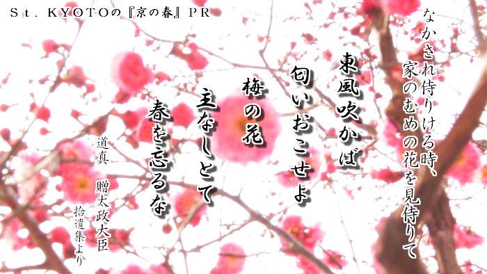 京の春PR
