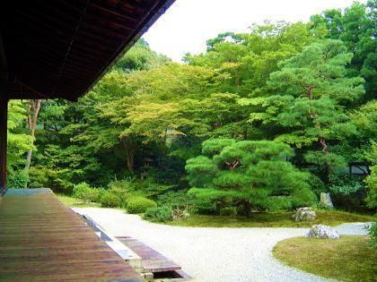 泉涌寺のお庭