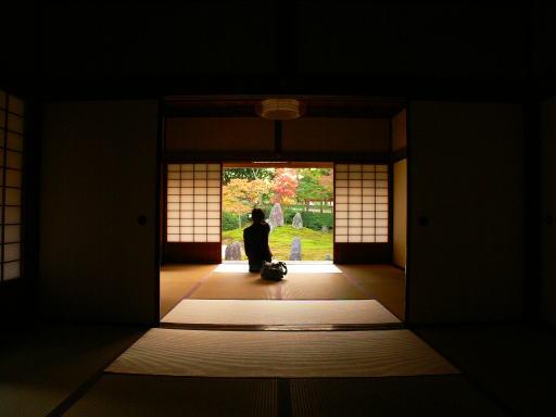 ゆるりと眺める京の庭