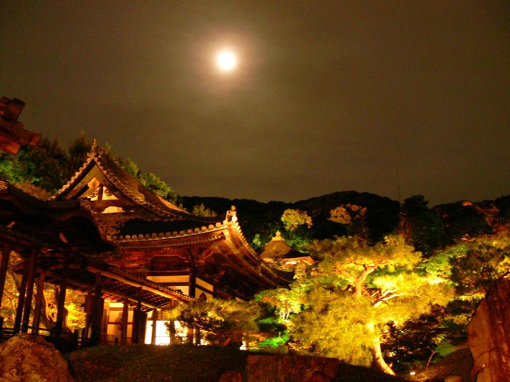 おぼろ月夜の高台寺