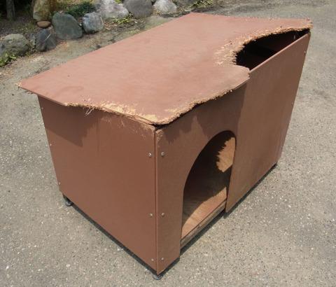 犬小屋ブログ用1