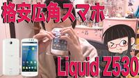 Liquid Z530