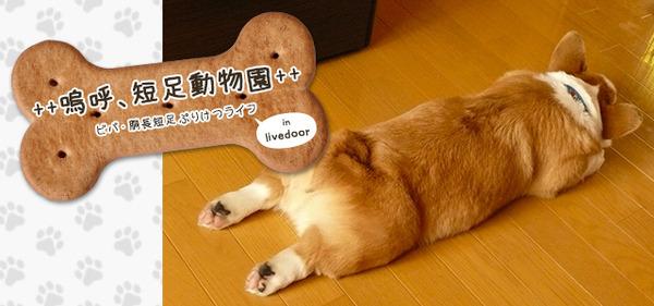 3_tansoku