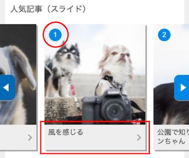 slide_image1