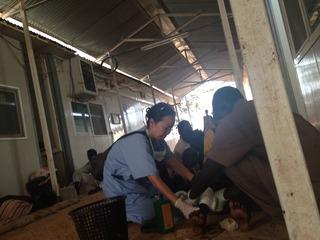 2014年南スーダン_コンクリートの上で医療を始めた