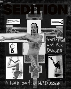 sedition-3