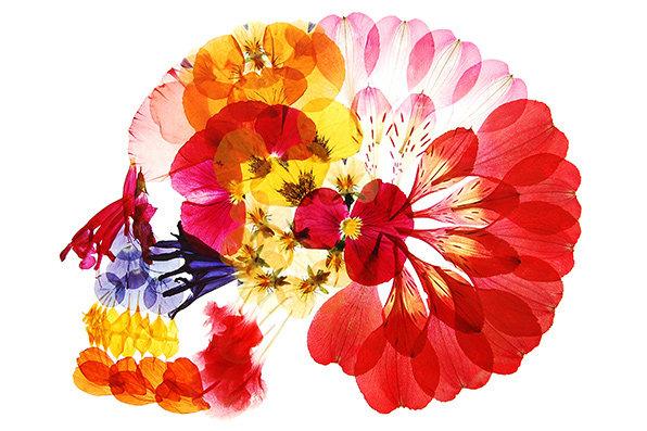 flora_150615_04