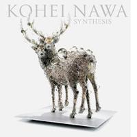 bk-nawa-synthesis-02