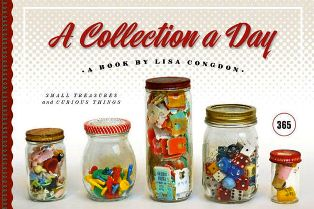 A_Collection_A_Day