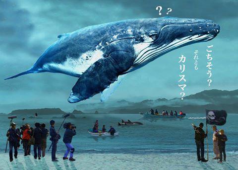 クジラ映画カバー画像
