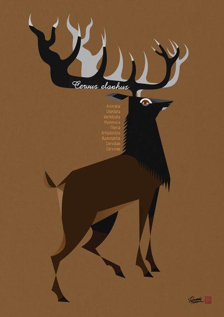 hevio_deer