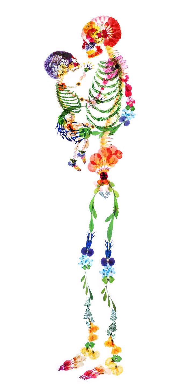 color_all_flora2_s