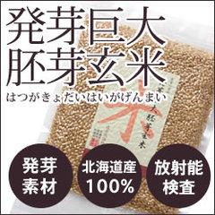 お米が変身 ユニークなアイディア / 2016.01.13