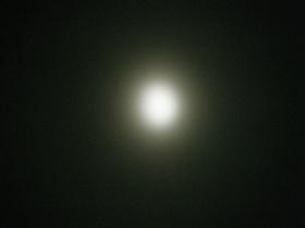 79e1a888.jpg
