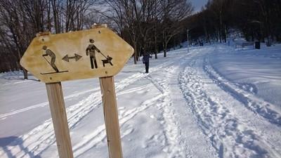 真駒内公園雪上ラン