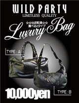 109-2 luxury bag